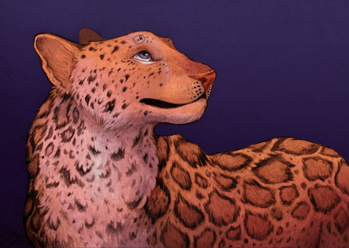 Amur leopard! [fullview here!]  I had a hard time making color decisions with this one, too, but I finally came to a combination that I liked and rolled with it. C: