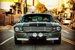 automotivated:  Shelby GT500 Eleanor (by Jeferson Grilo)