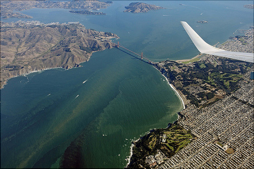 sf-bay:  San Francisco Bay (by L Plater)