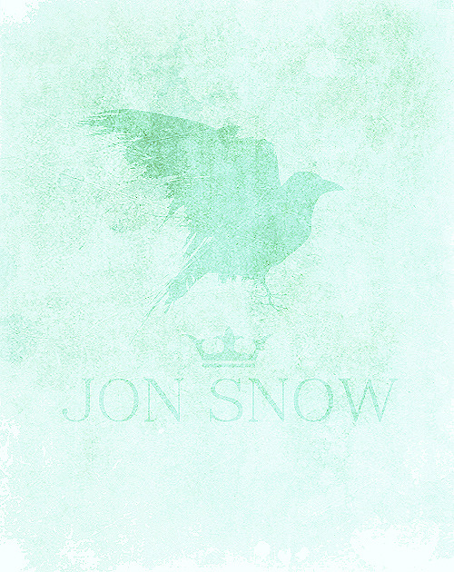 """King,"" croaked the raven. The bird flapped across the air to land on Mormont's shoulder. ""King,"" it said again, strutting back and forth. ""He likes that word,"" Jon said, smiling. ""An easy word to say. An easy word to like."" ""King,"" the bird said again. ""I think he means for you to have a crown, my lord."" ""The realm has three kings already, and that's two too many for my liking."" Mormont striked the raven under the beak with his finger, but all the while his eyes never left Jon Snow.  ASOIF 30-day challenge;- Day Three: a scene you want to see on the show."