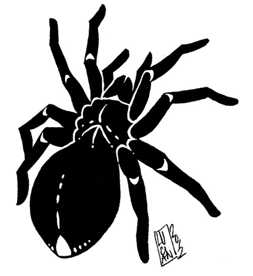 Tarantula tattoo design for a friend, who really liked it!  Good. Ink.  April 2012.