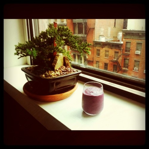Super Energy Breakfast Smoothie! Blueberries, banana, chia seeds (organic sprouted powder), maple almond butter, & almond milk! Rise and Shine and Energize!!! Chia was eaten by the Aztecs for strength.  Also contains iron, calcium, potassium, and protein, in addition to antioxidants.