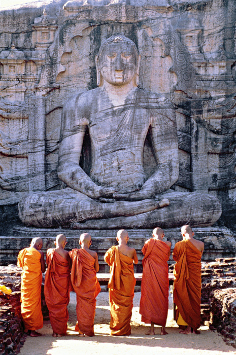 unitended:  Buddha is a word that comes from ancient sanskrit, meaning 'awakened one'. It is generic term for anyone who has attained enlightment.