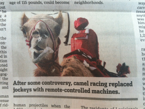 Robot camel jockeys? Who knew?