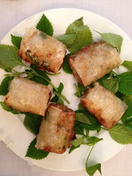 "Vietnamese spring roll i start my food tour in vietnam with this chia giao ""spring rolls"". filled with fresh vegetables and be hoon. sometimes they fill with minced chicken or pork. it was really good. recommended appetizers during meal or as a snack"