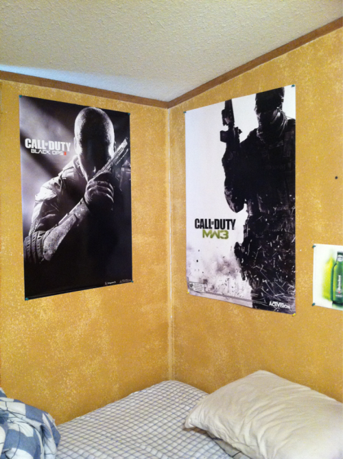 NICE! My stupid cat ripped up my posters. I think she secretly hates Call of Duty. -_- chiefsmokalot:  I'm such a fkn nerd :)