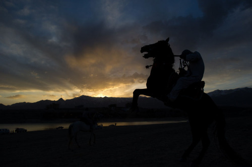 watanafghanistan:  An Afghan horseman rides at the sunset beside Qargha Lake in Kabul, on April 5, 2012.