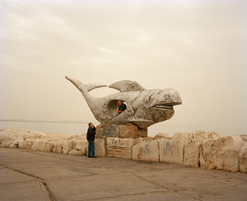 Belly of a Whale, Akko, from Everything That Rises Must Converge    Adam Golfer