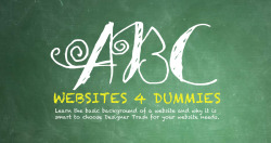 Know nothing about websites? See the basics on how they work! Choose Designer Trash Creative Design Studio to put your company on the web! Websites 4 Dummies section