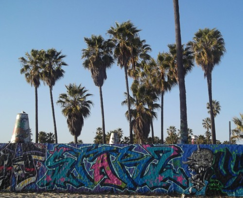 (via venice beach. art walls.)