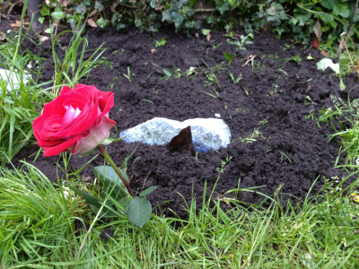 My hammies grave, we buried him this evening. I still cant believe he's gone, and each time i walk past his cage, for a second, i have the urge to greet him and cuddle him. But then i realise he's gone. It seriously happened to me at least 5 times today. I just miss him so much.. :(