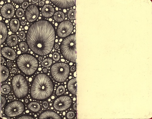 myapathy:  From my RedBook (No.8) Diatoms ~