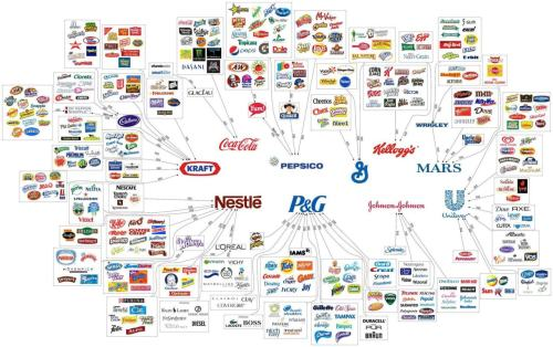 The Illusion of Choice. Ten major corporations own the majority of our day-to-day household items. Note, all of them continue to test on animals (except for Pepsico, as of 2007.)    I searched high and low for the original source of the graphic but had no luck. I originally saw it here then, out of my own curiosity, researched the animal testing factor.