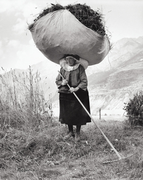 goodmemory:  firsttimeuser:  Haying in Cogne, 1959 by Pepi Merisio