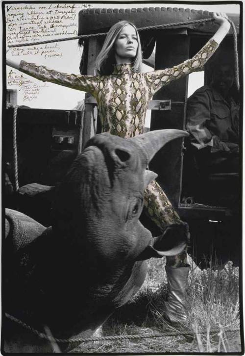 firsttimeuser:  Veruschka von Lehndorf roping rhinos, 1964 by Peter Beard