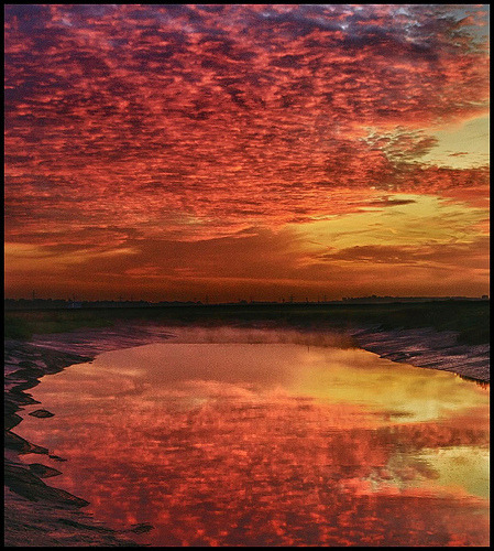 llbwwb:  Reflecting the fire (by adrians_art)