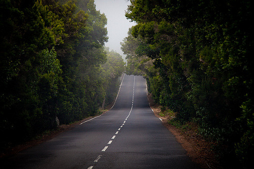 archenland:  Mystic road (by iamrebel1)