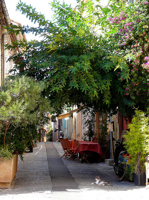 Ruelle de Vieux Saint-Tropez  | by myvalleylil1 | via visitheworld