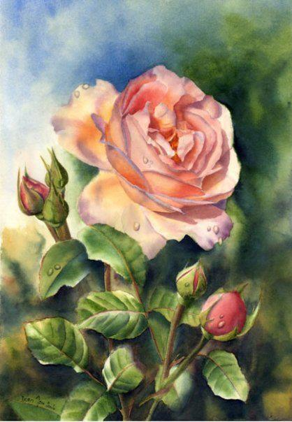 ufukorada:  Doris Joa | German realistic watercolor and oil painter