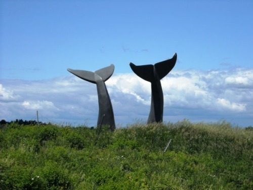 "Whale Tails""Reverence"" sculptureBurlington, Vermont"