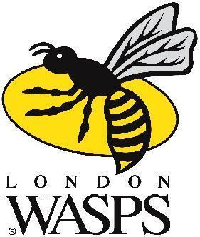 justthatkindaguy:  COME ON WASPS!