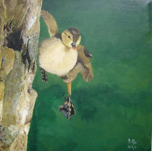 Duckling in Flight Painted a year ago, acrylics on canvas.
