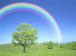 loveabchrist:  The seven beautiful colors of a rainbow.. the value. a metaphor for happiness and promises to me. a satisfying and joyful feeling. :)