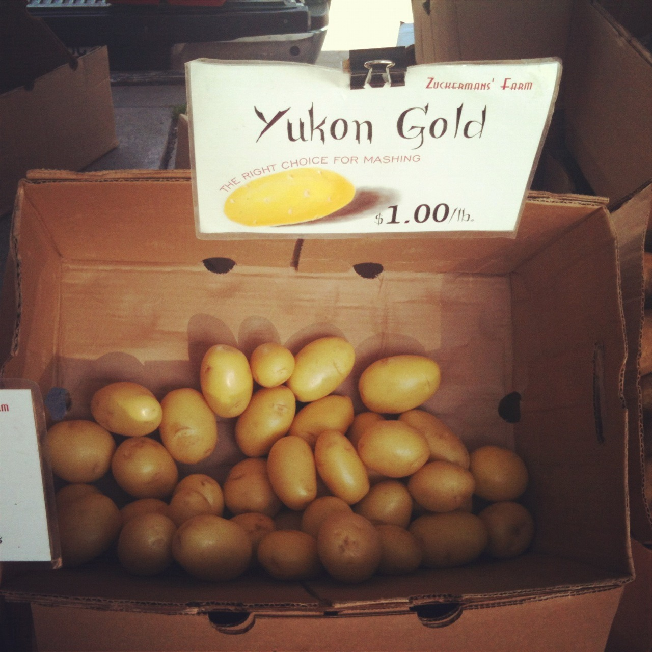 New Yukon Golds