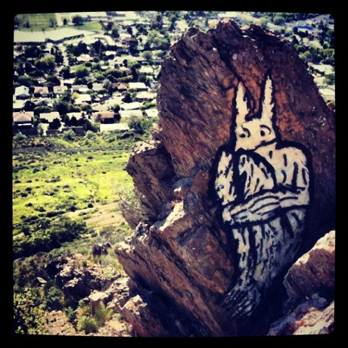 Rabbit on a rock #art #streetart #rock #nature #mountains #location  (Taken with instagram)