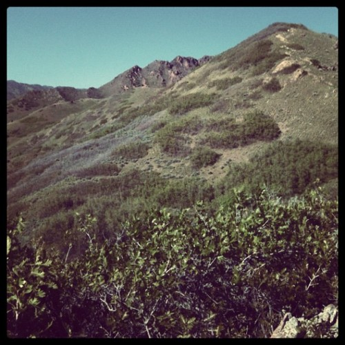 Mountains #nature #mountains #location #green (Taken with instagram)