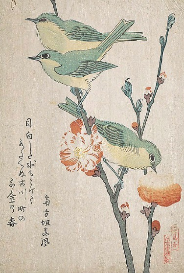 Kubo Shunman Japanese White Eyes Perching on Peach Tree 19th century