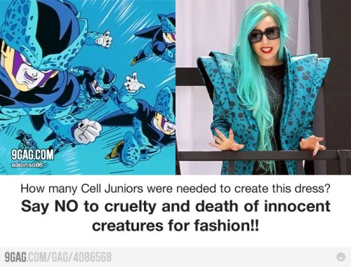 9gag:  (via 9GAG - Say NO to cruelty of innocent creatures for fashion!)