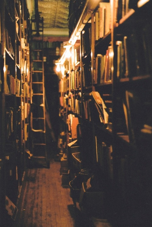 bookmania:  Ollivanders Wand Shop? Nope, it's all antique books! (Photo by Jacqueline Foss)