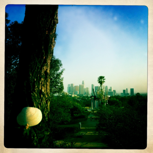 love letter: los angeles, i'm yours. location: angel's crest, echo park