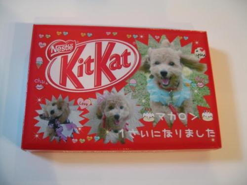 create your very own Kit Kat box with pictures(10box) http://www.flutterscape.com/product/no/20747/create-your-very-own-kit-kat-box-with-pictures?discovery_id=23399