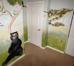 Mural of rain forest animals in Denver home. This is another photo from the recent 'Rain Forest Room'… see previous post.