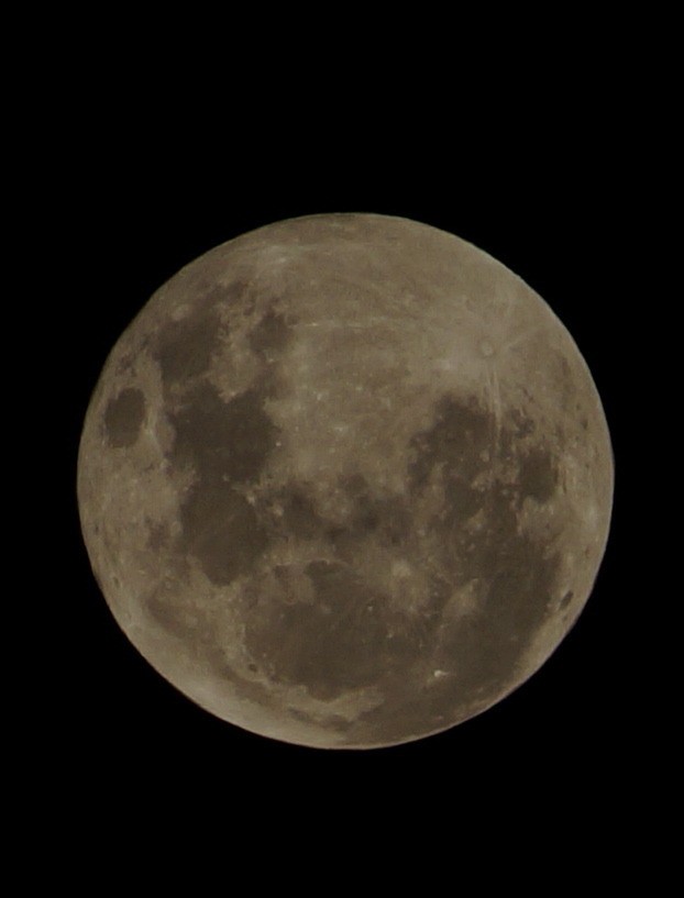 Wellington #supermoon