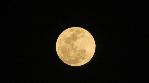 Super moon seen from El Salvador. from adrianalandia