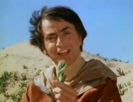 "carlsaganshair:  ""We call them plants."" Carl Sagan, the master of wearing two hairstyles at the same time."