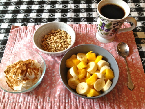 thefitty:  yogadinosaur:  Breakfast= greek yogurt with cinnamon, hemp seed granola, banana and mango, coffee. :)  (via imgTumble)