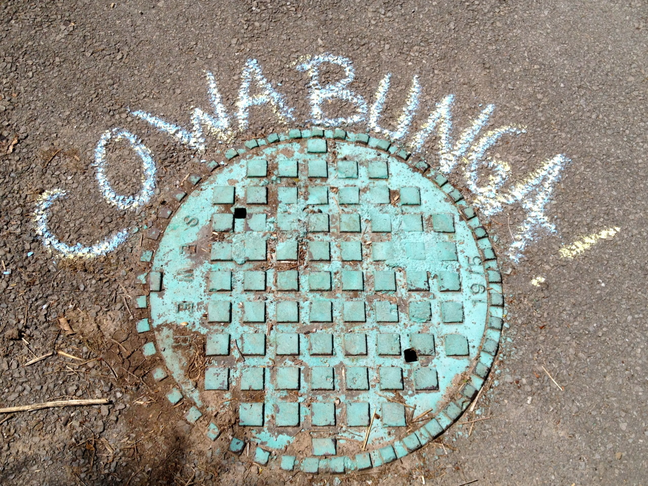 Cowabunga! Submitted: chalkthoughts.com