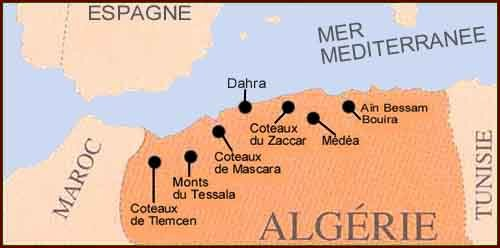 Location of Algeria's Main Wine Producing Regions