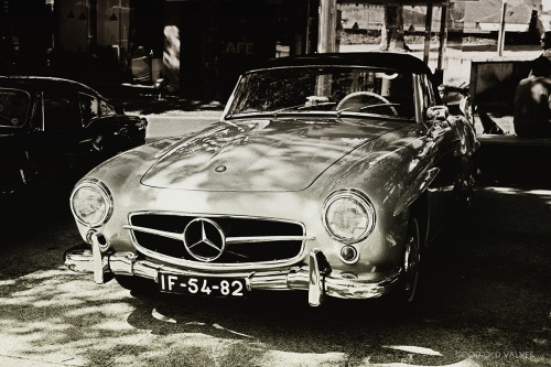 Mercedes-Benz 190SL W121 (1956) I actually met the owner of this 190SL and everytime he was talking, I felt like brutally attacking him like a jealous cougar (yes, cougars have quite the reputation for jealousy. The animal kingdom is a bitch). I've said this a couple of times before and I'll say it again: portuguese license plates are the best for vintage cars. Those white numbers extrude at about 1.2 inches from the plate itself. They're gorgeous.