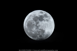 "Perigee Moon""Three things cannot be long hidden: the sun, the moon, and the truth."" - The Buddha Siddharta"