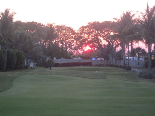 Florida on the sunset golf course