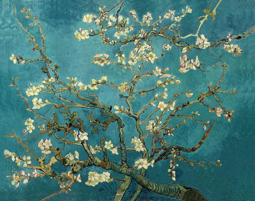 battez-vous:  Branches with Almond Blossoms (1890) by Vincent van Gogh, oil on canvas