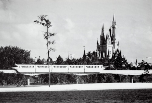 billy-hill:  At Walt Disney World, the streamlined Monorail glides past Cinderella's Castle, which towers almost 200 feet high—much higher than its predecessor in Disneyland.