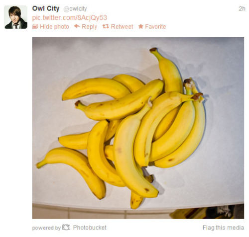 So Adam Young tweeted a picture of bananas. I don't know why. But it's goin' on my blahg because bananas.