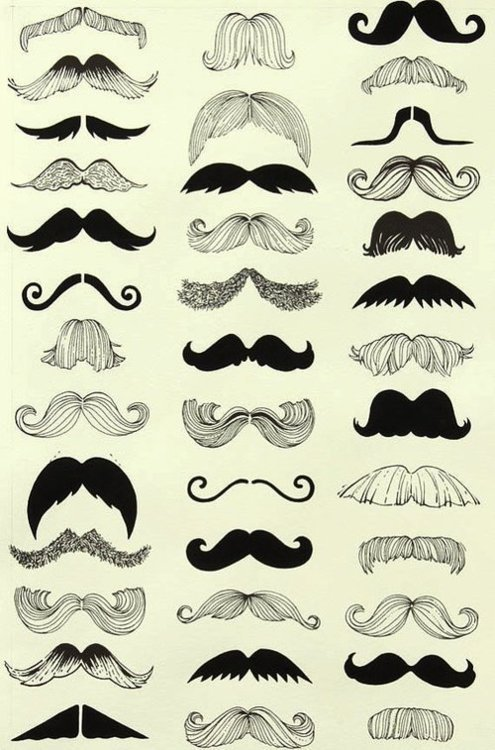 thereoncewasallison:  I MUSTACHE you a question but I'll SHAVE it for later :D