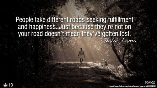People take different roads seeking fulfillment and happiness. Just because they're not on your road doesn't mean they've gotten lost.— Dalai Lama